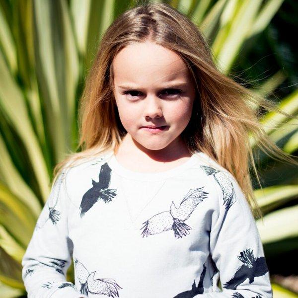 Bandit Kids grauer Pullover spooky birds Mädchen