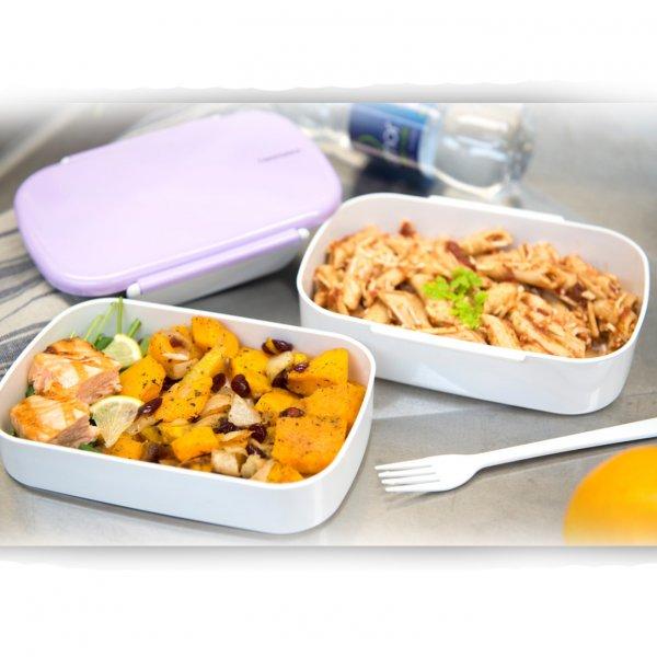 Takenaka Bentobox lunchbox doppelt